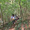 trilha-para-chegar-a-cachoeira-do-eco-parque-jacaré