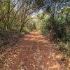 estrada-do-bosque-do-poção-em-brotas