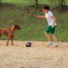 Menina-brincando-de-bola-com-um-cachorro-na-quadra-de-areia
