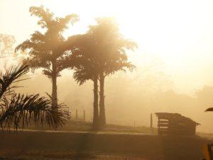 neblina-no-nascer-do-sol-de-brotas